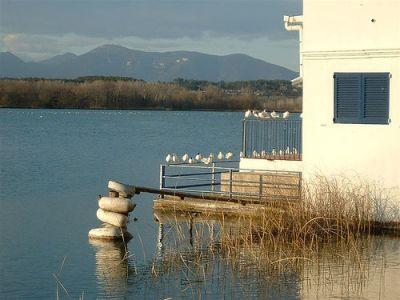 El lago de Banyoles by guyjames. CC. Flickr
