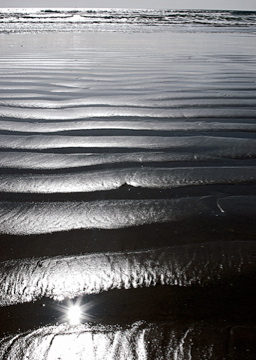 marea-negrabarefoodmama
