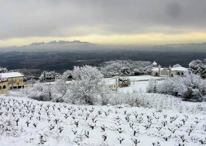 Penedes nevat. by Carlos Gardon